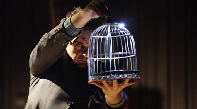 'Circo submarino', el espectáculo para los más pequeños