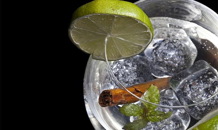 Cómo servir el gin tonic perfecto estas navidades
